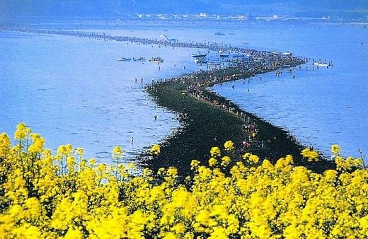 Mặt biển Jindo tự động tách đôi
