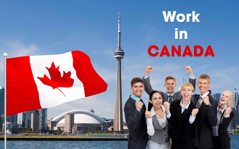 Nghề nghiệp được định cư tại Canada