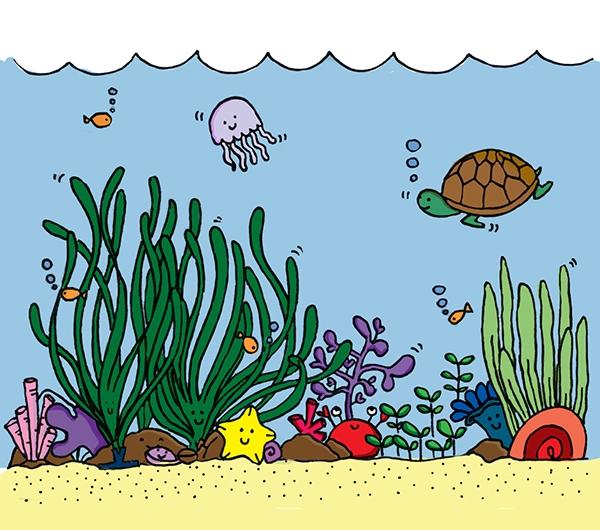 Loài rùa biển