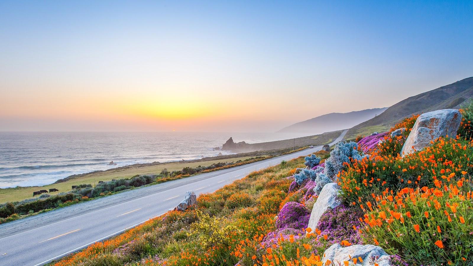 California có khí hậu ôn hòa và nắng ấm cùng bờ biển chạy dài dọc theo Thái Bình Dương