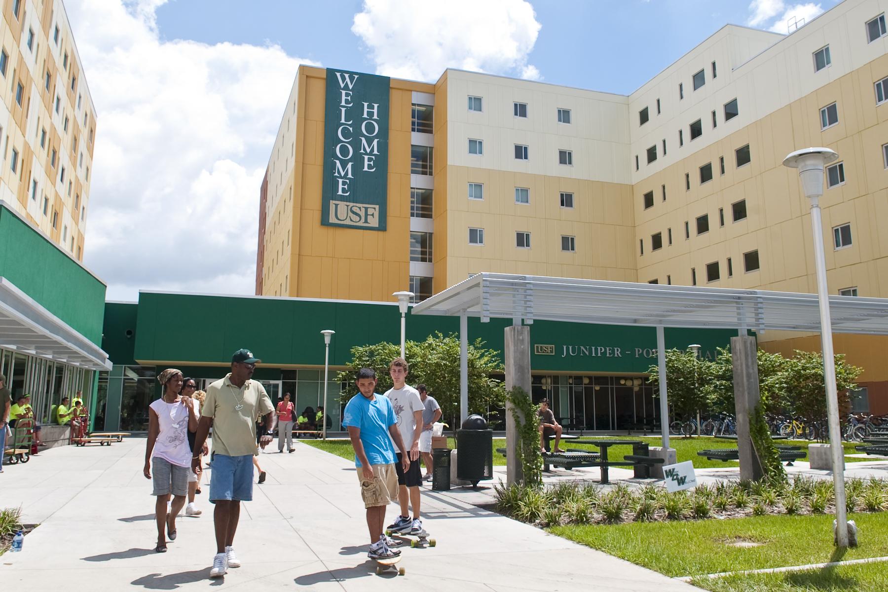 Chương trình dự bị đại học tại trường Đại học South Florida
